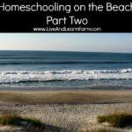 Homeschooling on the Beach Part 2