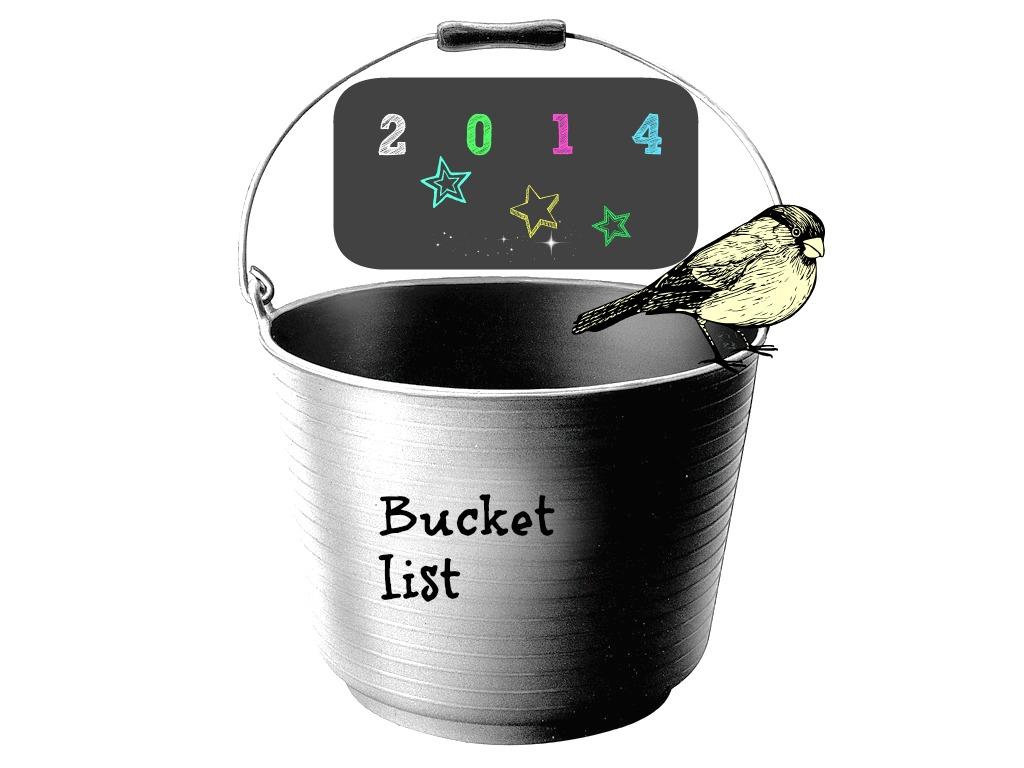 Bucket list for Blake