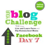 Pay to Play on Facebook – Boost Your Blog #BB100