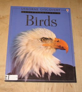 Birds - Usborne Discovery